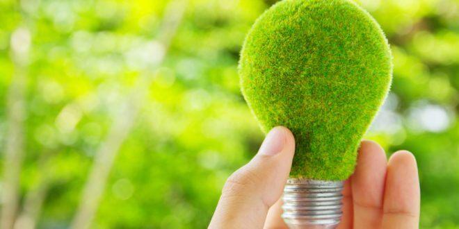 materiale ecologice